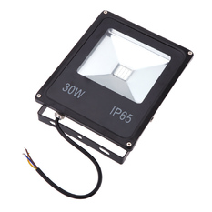Giá bán AC85-265V 30W IP65 Waterproof Efficient LED Flood Light Plant Grow Light (Intl)