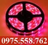 Đèn LED Dán 5M Màu Đỏ