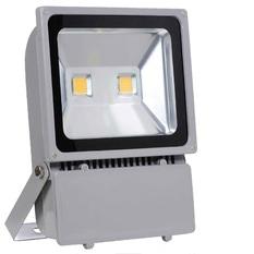 Giá bán Đèn Led pha 100W Light LP100T (Ánh sáng trắng)