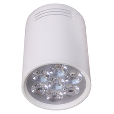 Giá bán Đèn Ray ánh sáng vàng LED 12W (Trắng)