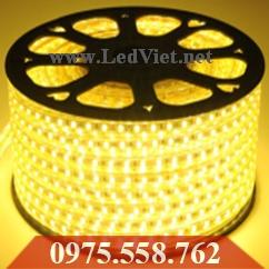 LED Dây 5050 Cao Cấp Vàng