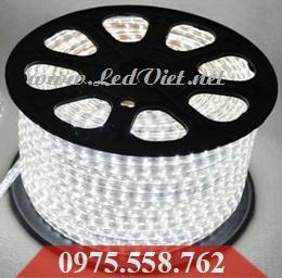 LED Dây 5050 Trắng Cao Cấp