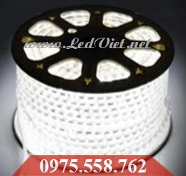 LED Dây 5050 Trắng Giá Rẻ